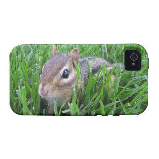 Chipmunk en la hierba iPhone 4/4S funda