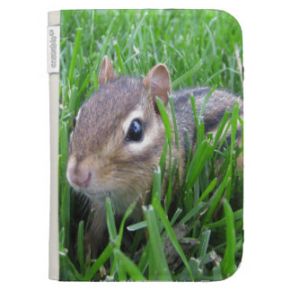 Chipmunk en la hierba