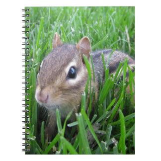 Chipmunk en la hierba libretas espirales