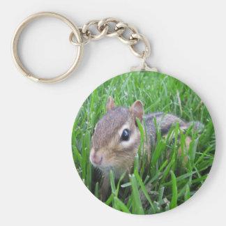 Chipmunk en la hierba llavero personalizado