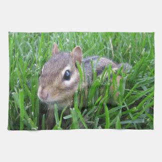 Chipmunk en la hierba toallas de mano