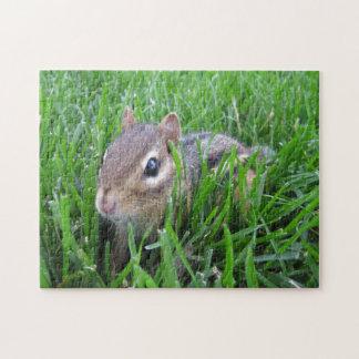 Chipmunk en la hierba rompecabeza con fotos