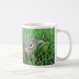 Chipmunk en la hierba taza de café