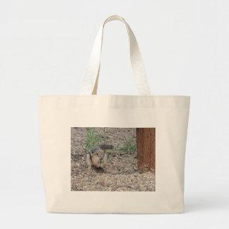 Chipmunk Feeding on Ground Bag