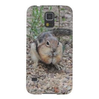 Chipmunk Feeding on Ground Galaxy S5 Case