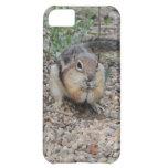 Chipmunk Feeding on Ground iPhone 5C Case