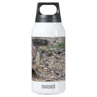 Chipmunk Feeding on Ground 10 Oz Insulated SIGG Thermos Water Bottle