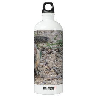 Chipmunk Feeding on Ground SIGG Traveler 1.0L Water Bottle