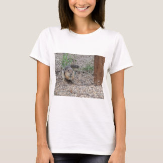 Chipmunk Feeding on Ground T-Shirt