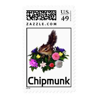 Chipmunk & flower 1
