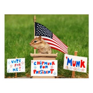 Chipmunk for President Postcard