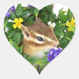 Chipmunk, foto (4) type-3 calcomanía de corazón
