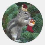Chipmunk fresco del navidad pegatina redonda