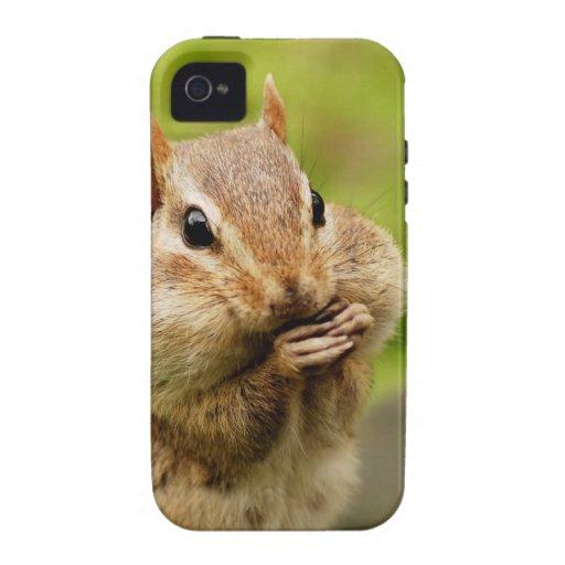 Chipmunk fresco lindo vibe iPhone 4 funda