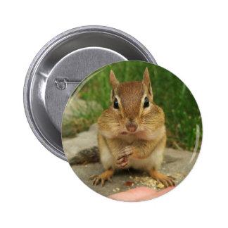 Chipmunk fresco pin redondo 5 cm