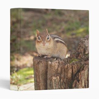 "Chipmunk gordo y mullido lindo 1"" álbum de foto carpeta 1"""