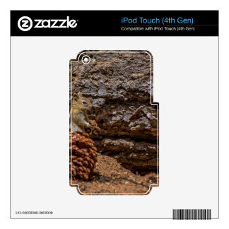 Chipmunk Harvest Skins For iPod Touch 4G