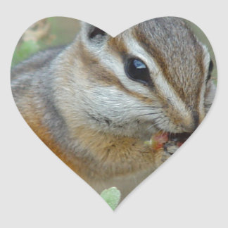 Chipmunk Heart Sticker