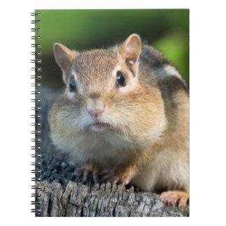 Chipmunk hinchado de Cheeked Note Book
