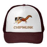 Chipmunk illustration (2) Gorros