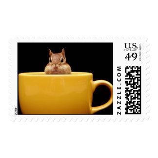 chipmunk in a coffee mug postage