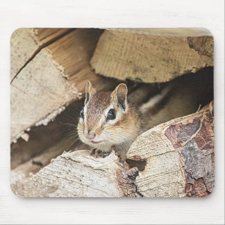 Chipmunk in a wood pile mouse pad