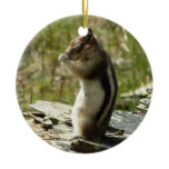 Chipmunk in Glacier National Park II Nature Photo Ceramic Ornament