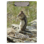 Chipmunk in Glacier National Park II Nature Photo Clipboard