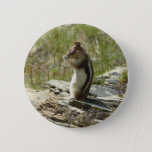 Chipmunk in Glacier National Park II Nature Photo Pinback Button