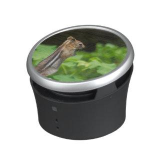 Chipmunk In South Lake Tahoe Bluetooth Speaker