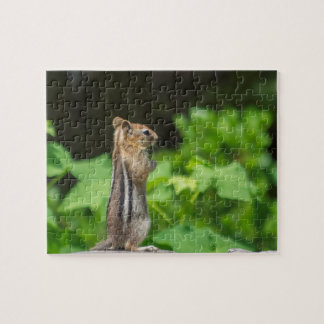 Chipmunk In South Lake Tahoe Jigsaw Puzzle