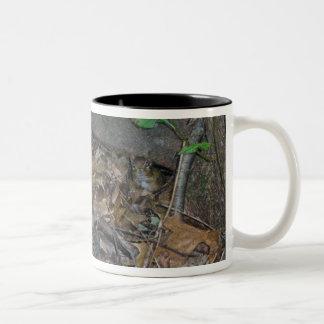 Chipmunk in Woods Coordinating Items Coffee Mug