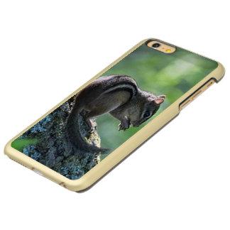 Chipmunk Incipio Feather® Shine iPhone 6 Plus Case