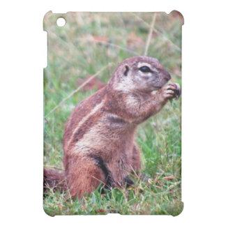 Chipmunk iPad Mini Case