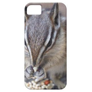 Chipmunk iPhone 5 Cases