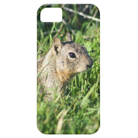 Chipmunk iPhone SE/5/5s Case