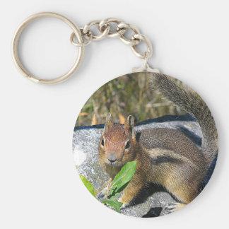 Chipmunk Key Chains