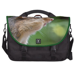 Chipmunk Bags For Laptop
