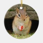 Chipmunk lindo del bebé con la fresa ornamento de navidad