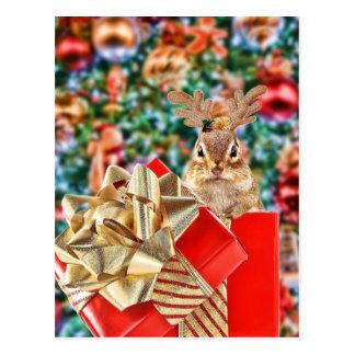 Chipmunk lindo del navidad tarjetas postales
