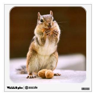 Chipmunk lindo que come un cacahuete