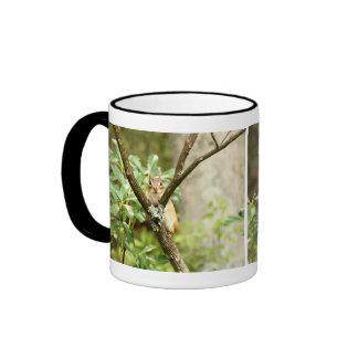 Chipmunk lindo que sienta un árbol taza a dos colores