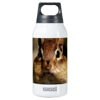 Chipmunk Look forward to love Insulated Water Bottle