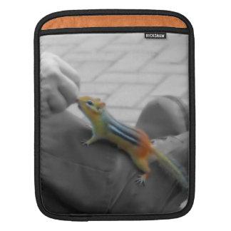 Chipmunk Lunch iPad Sleeves