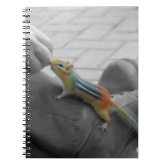 Chipmunk Lunch Notebook