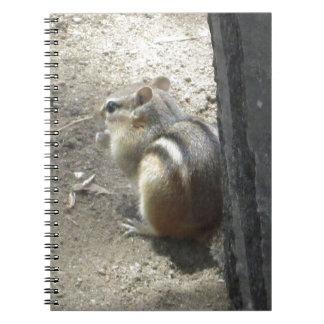 Chipmunk Midland Ontario Spiral Notebook