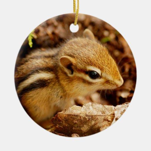 Chipmunk minúsculo del bebé ornamento para arbol de navidad