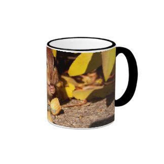 Chipmunk -Mug