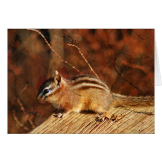 Chipmunk Occasional card
