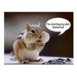 Chipmunk on a Diet Photo Post Cards
